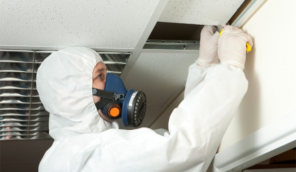 Residential Asbestos Testing Survey And Inspection
